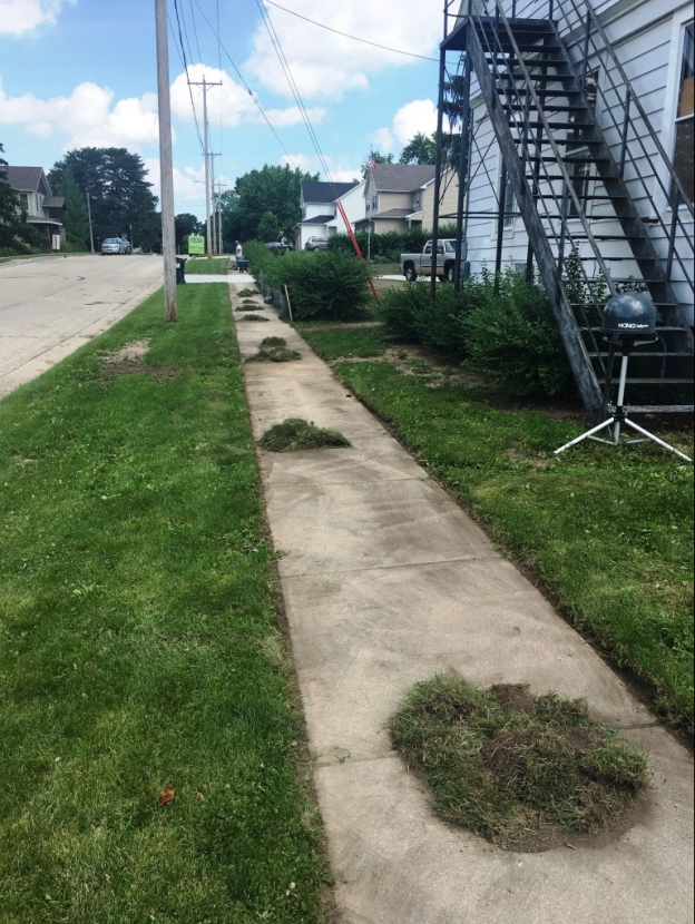 sidewalk edging