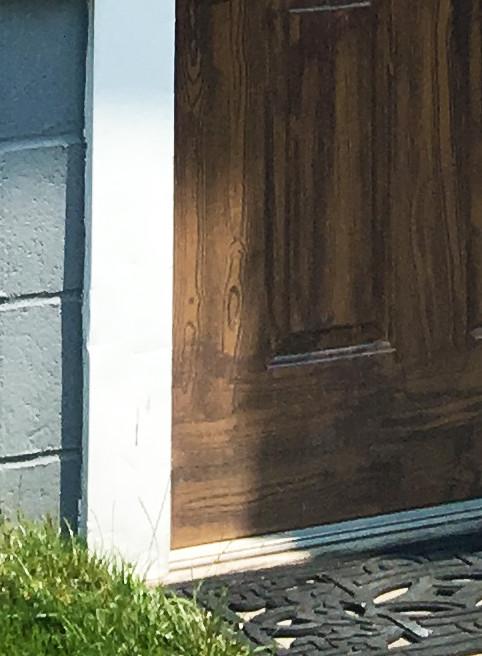 side door wood grain